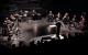 Солисты Athelas Sinfonietta